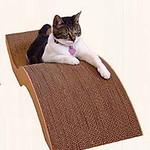 Los 10 mejores rascadores de gatos