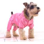 Los 10 mejores abrigos para perros