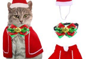 Los 10 mejores disfraces para gatos