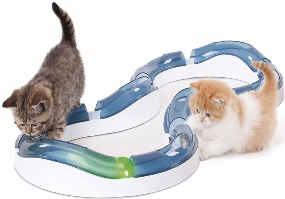 Juguete interactivo para gatos Catit Design Circuito de Rodillos