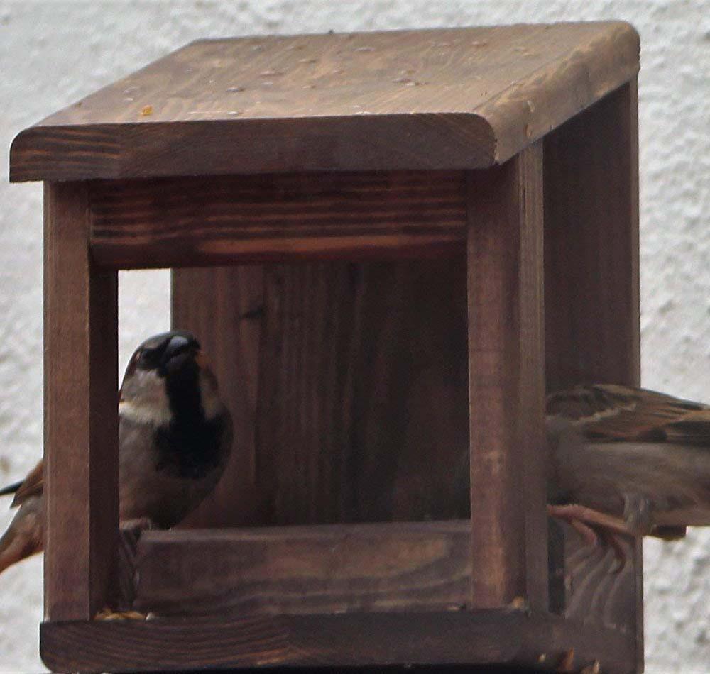 Comedero para pájaros Ecologic Wengué