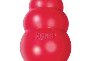 Los 10 mejores juguetes Kong