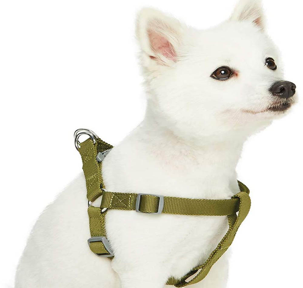 Arnés para perros UMI Essential Classic
