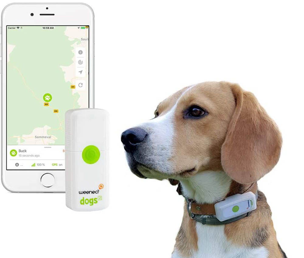 GPS para perros Weenect Dogs 2
