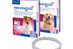 Los 9 mejores collares antiparasitarios para perros