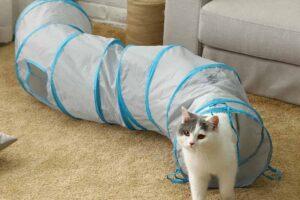 Los 9 mejores túneles para gatos
